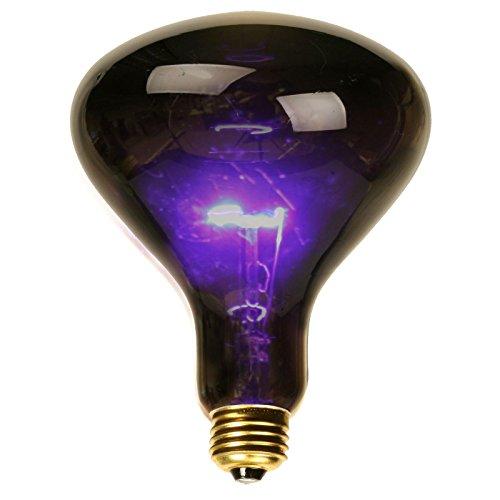 Small Black Light Spotlight Bulb